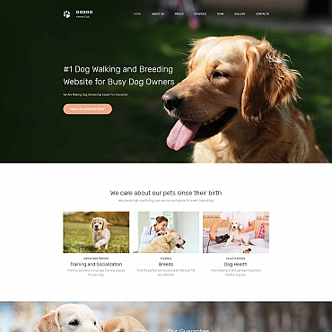 Website Template № 65288