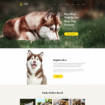 Website Template № 65296