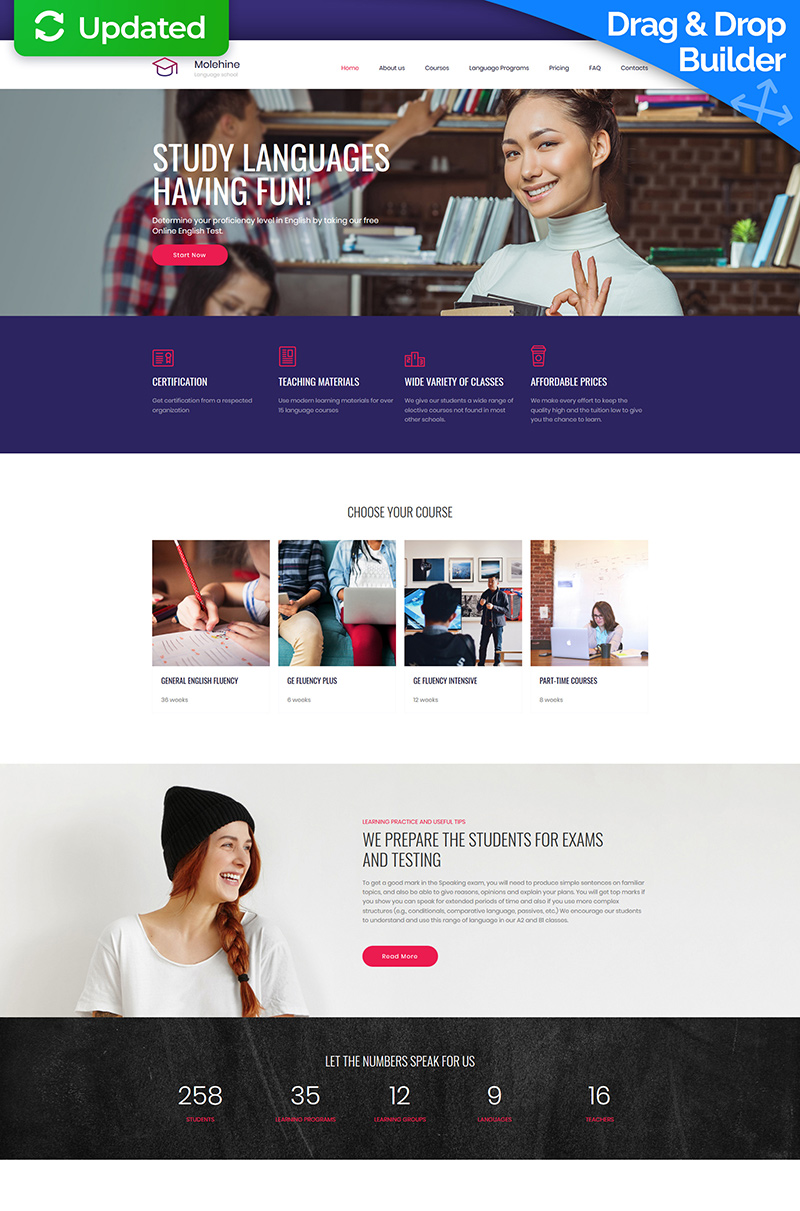 Molehine - Language School Premium Moto CMS 3 Template