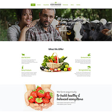 Website Template № 65803