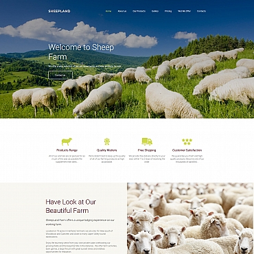 Website Template № 66397