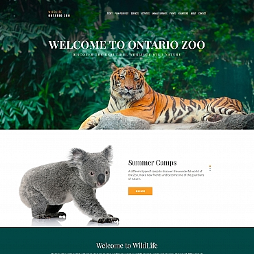Website Template № 66407