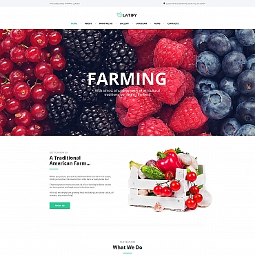 Website Template № 66426