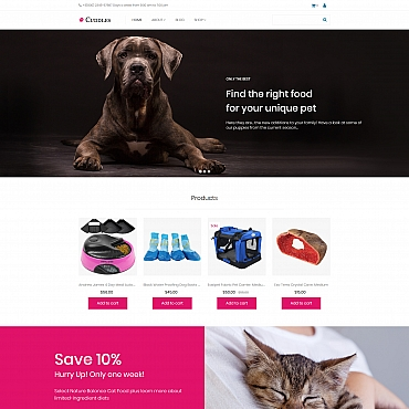 Website Template № 66551