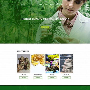 Website Template № 68197