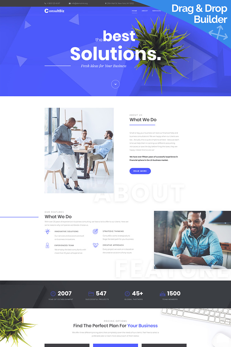 ConsultBiz - Financial Advisor Moto CMS 3 Template