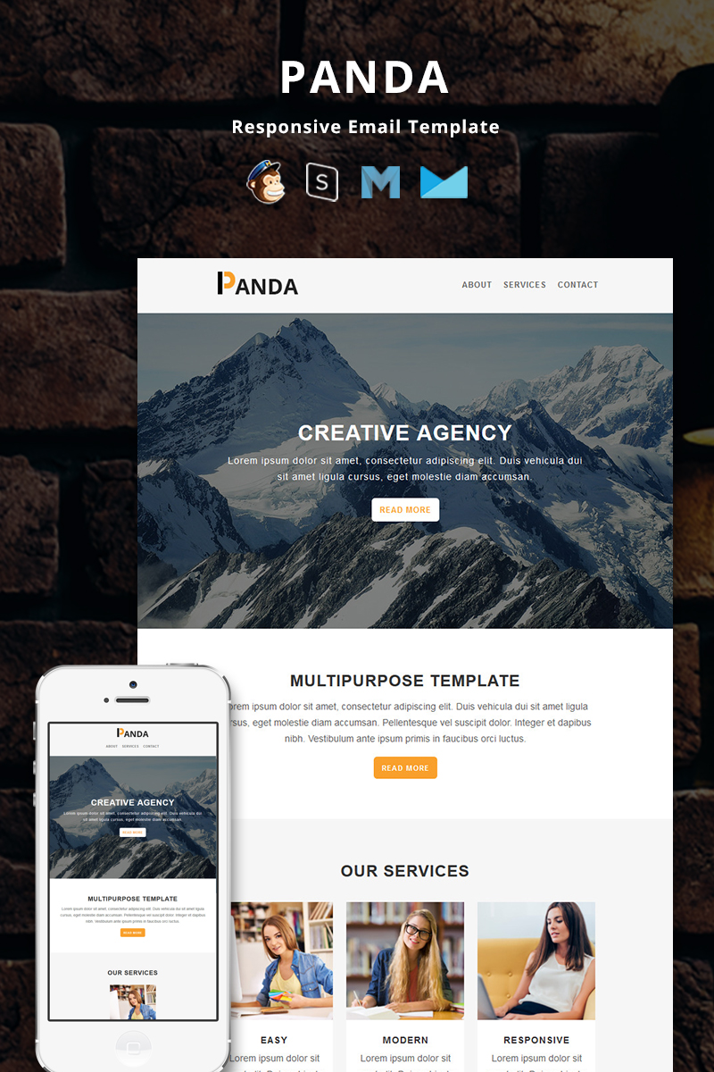 Panda - Corporate Responsive Email Newsletter Template