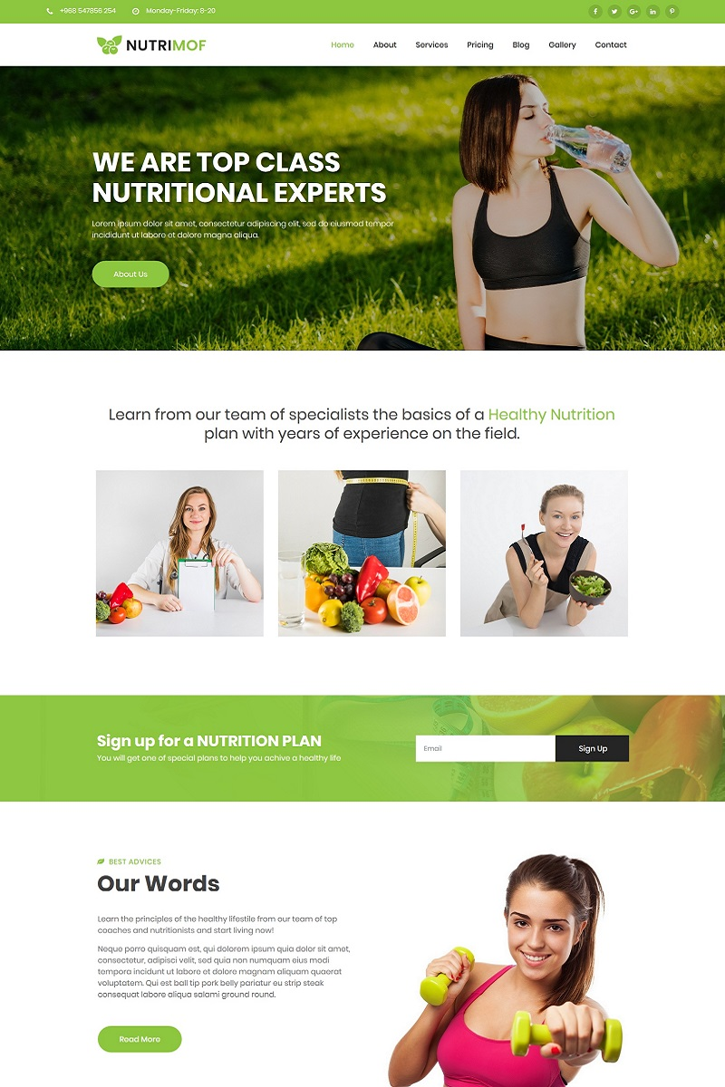 Nutrimof - Nutritional & Health Joomla Template