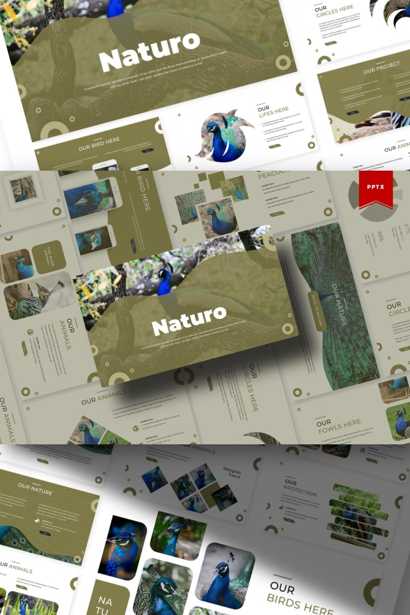 Naturo | PowerPoint Template