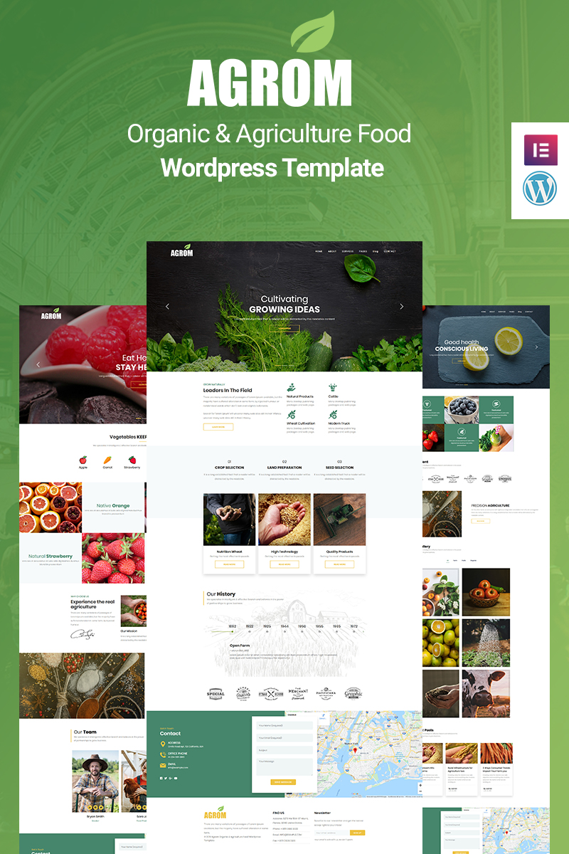 WordPress темы