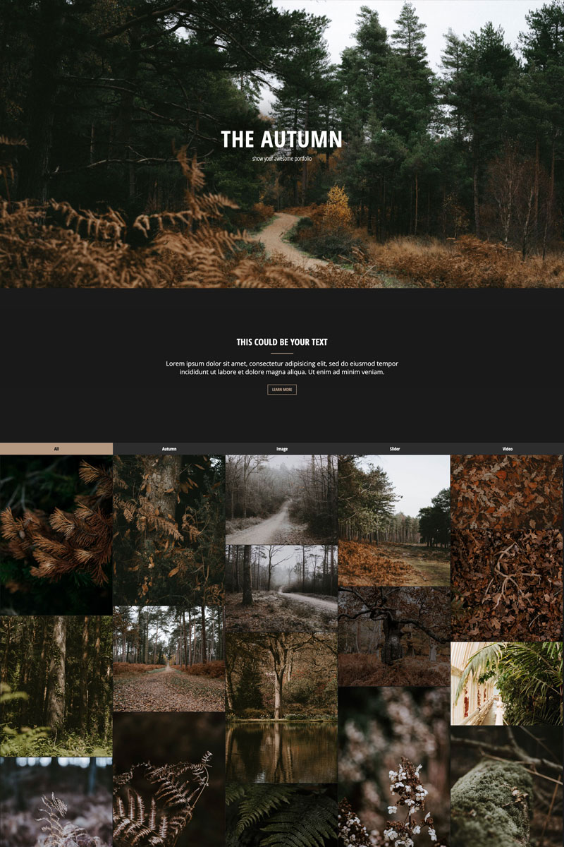 The Autumn - Portfolio | Responsive Drupal Template