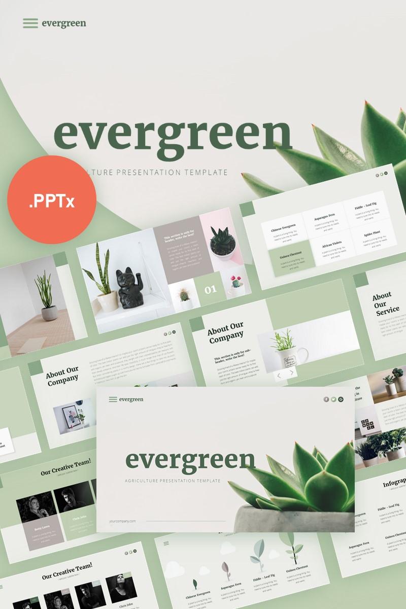 Evergreen Minimalist Presentation PowerPoint Template